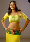 Download South Indian Actress Anushka Photos