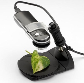 E-supply Japan USB Microscope - Innovative Product Designs and Gadgets