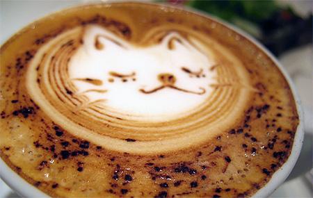 Cat Coffee Foam Art